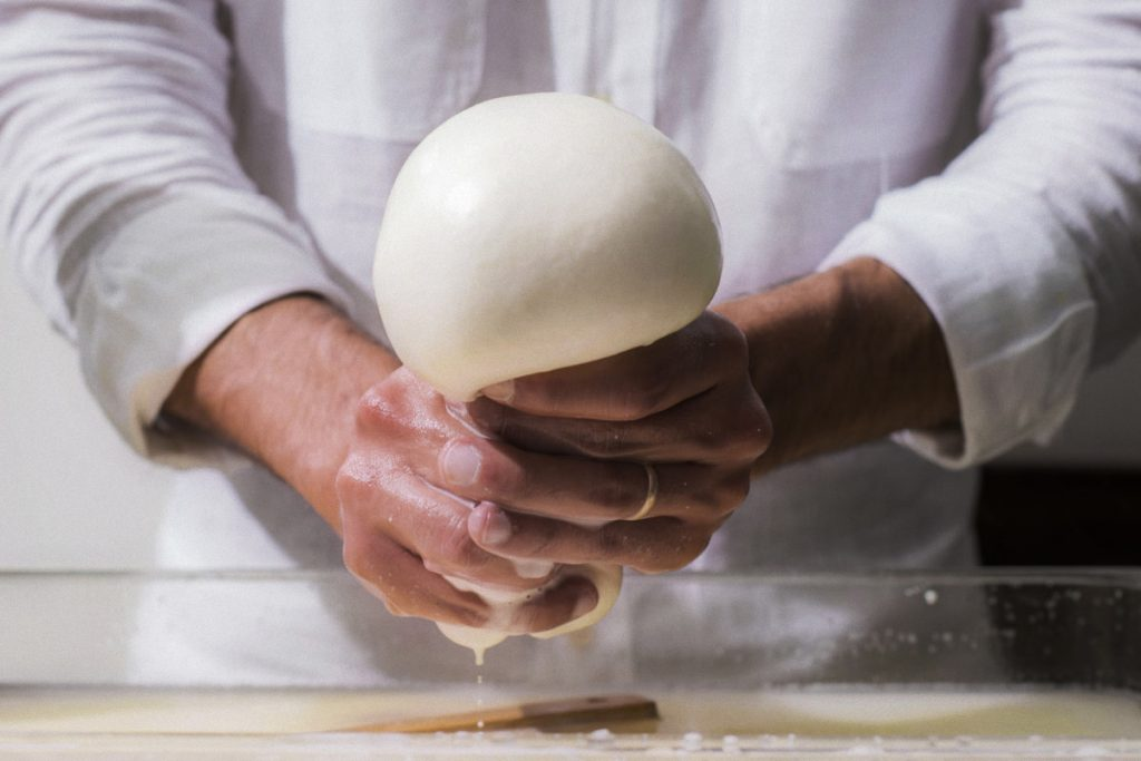 Mozzarella Workshop